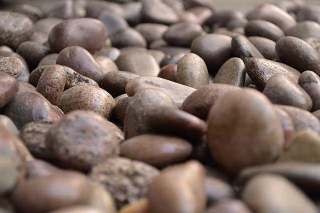beech pebbles